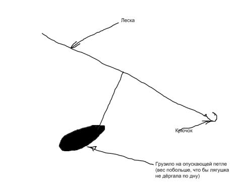 как насадить лягушку при ловле на сома