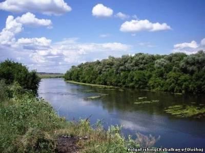 рыбалка на реке кинель самарской области форум